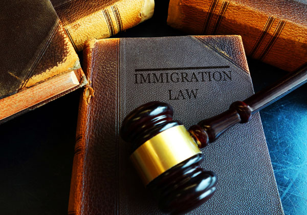 Immigration Law assistance